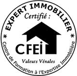 Logo CFEI